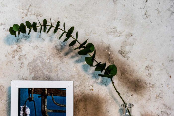 betonlook archi+ wandafwerking novacolor